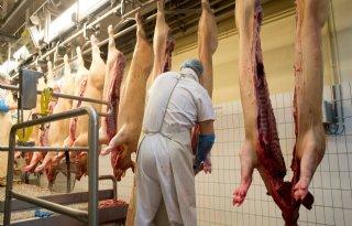 Varkensvleesorganisatie+op+komst