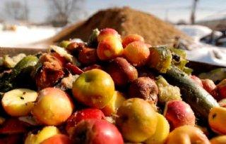 Horeca+zet+misvormde+groenten+en+fruit+op+de+kaart
