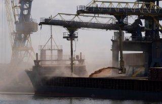 Nederland+grootste+importeur+cacaobonen+ter+wereld