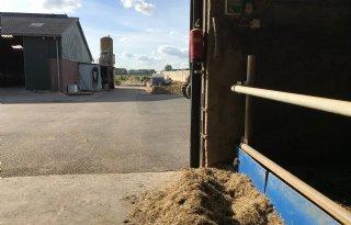 Melkveehouder loopt twee sneden gras mis