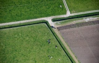 EU%2DRekenkamer+onderzoekt+inzet+satellietfoto%27s+voor+GLB%2Dcontrole