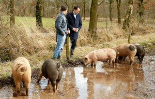 Campagne+moet+varkensvlees+redden