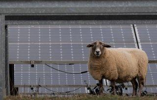 VVD en Partij voor de Boeren tegen aanleg zonneparken