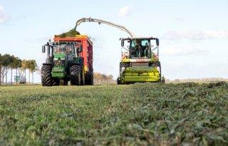 Jong gras in 2018 beter bestand tegen droogte dan oud gras