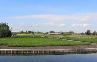 Rijnland+in+actie+tegen+wateroverlast