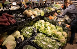 Productiewaarde+groente+en+fruit+stijgt+7+procent