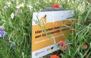 Opleving+wilde+bij+door+bijenlandschap+Leiden