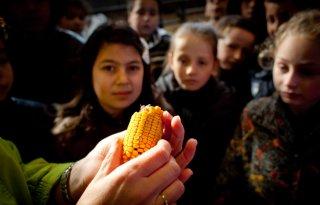Klasseboeren wil groeien in Brabant en Zeeland