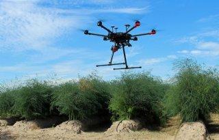 Een+op+de+tien+Duitse+boeren+zet+drone+in