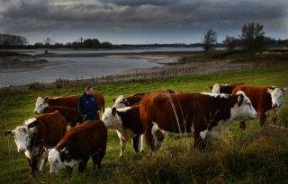 LTO Noord en Gelderse Natuur en Milieufederatie slaan handen ineen