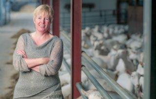 LTO+noemt+spanningen+voor+boeren+beroepsrisico