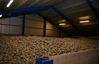 Aardappelvoorraad+ruim+26+procent+lager