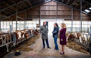 Koning bezoekt melkveehouders