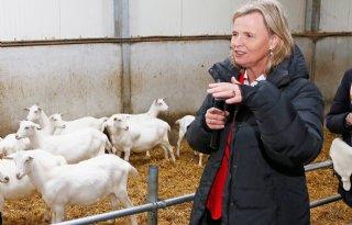 Annie+Schreijer+vijfde+op+CDA%2Dlijst+Europese+verkiezingen