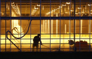 Werkgevers+glastuinbouw+laken+houding+FNV