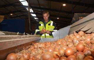 Nederlandse+uien+te+duur+voor+Azi%C3%AB