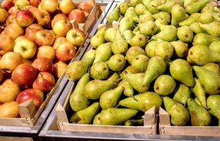 Winstwaarschuwing+groente%2D+en+fruitgigant+Greenyard