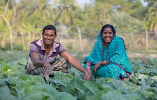 Bangladesh+krijgt+trainingscentrum+zilte+landbouw