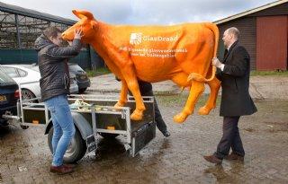Glasvezel+voor+boeren+in+Flevoland