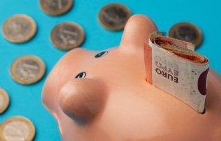 Banken%3A+lenen+voor+boeren+en+tuinders+steeds+lastiger