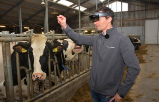 Bril+helpt+boer+tochtige+koeien+vinden