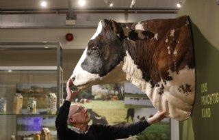 Meer+dan+pluimvee+in+Barnevelds+museum