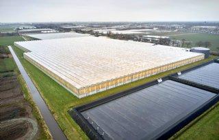 Financi%C3%ABle+positie+glastuinbouwbedrijf+stijgt+licht