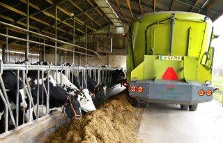 WTC De Kempen voert dagelijks bij 25 boeren