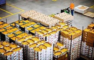 Verpakken+groente+en+fruit+mag+alleen+bij+lagere+milieubelasting