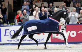 Nederlandse+paardensector+scoort+internationaal