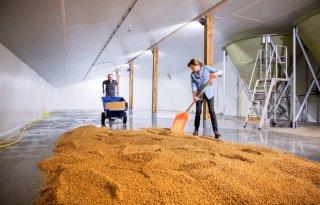 Lokale+bierproductie+zorgt+voor+leven+in+de+brouwerij
