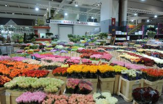 Fransen+stoppen+verkoop+bloemen+om+gelijkheidsprincipe+in+lockdown