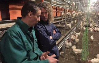 Valentijnsdate met pluimveehouder en dierenactivist