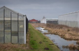 Waterschappen Noord-Nederland zoeken schadelijke lekkages
