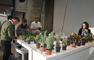 Ledbelichting+activeert+bloemengeur