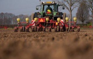Inzaai+suikerbieten+op+ruim+10%2E000+hectare