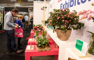 FloraHolland+schrapt+Trade+Fair+Aalsmeer