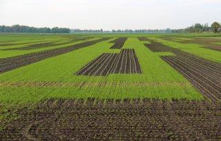 Regels+en+geld+remmen+kringlooplandbouw