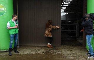 TV: Katja Schuurman laat koeien naar buiten