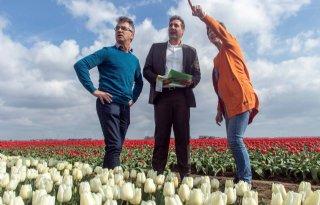 Meer+biodiversiteit+op+Flevolandse+akker