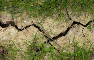 Schouten+rondt+Actieplan+klimaatadaptatie+landbouw+af