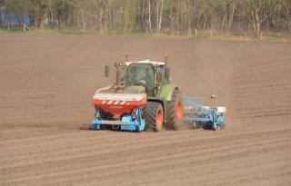 Eerste+mais+op+hoge+zandgronden+gezaaid
