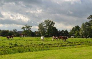 Boeren+Eemland+verdiepen+zich+in+kringlooplandbouw