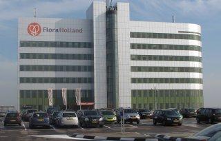 FloraHolland stopt weer geld in beton