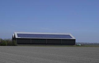 Meer geld voor jonge boeren in Noord-Holland
