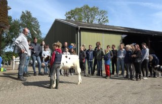 Kalveropfokclub+brengt+kinderen+in+contact+met+dieren