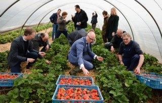 Voedselbos+biedt+alternatief+voor+agrarisch+systeem