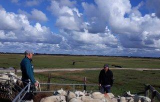Boeren+strijden+voor+behoud+natuur+Ameland