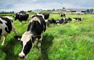 Melkprijs+in+april+bijna+euro+lager+dan+vorig+jaar