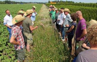 BASF+breidt+Farm+Network+naar+Nederland+uit